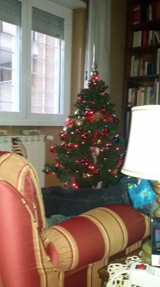 Julgranen är dekorerad